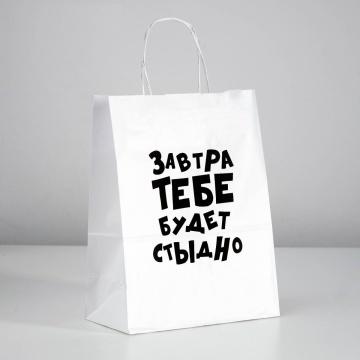 """Подарочный пакет """"Завтра тебе будет стыдно"""" - 30 х 24 см."""